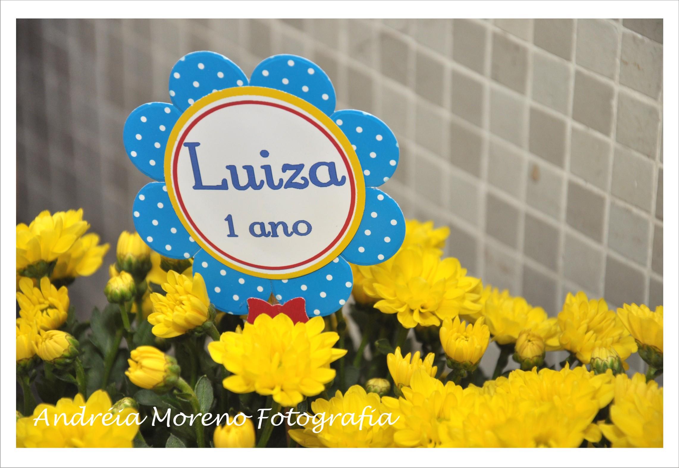 Luiza 24